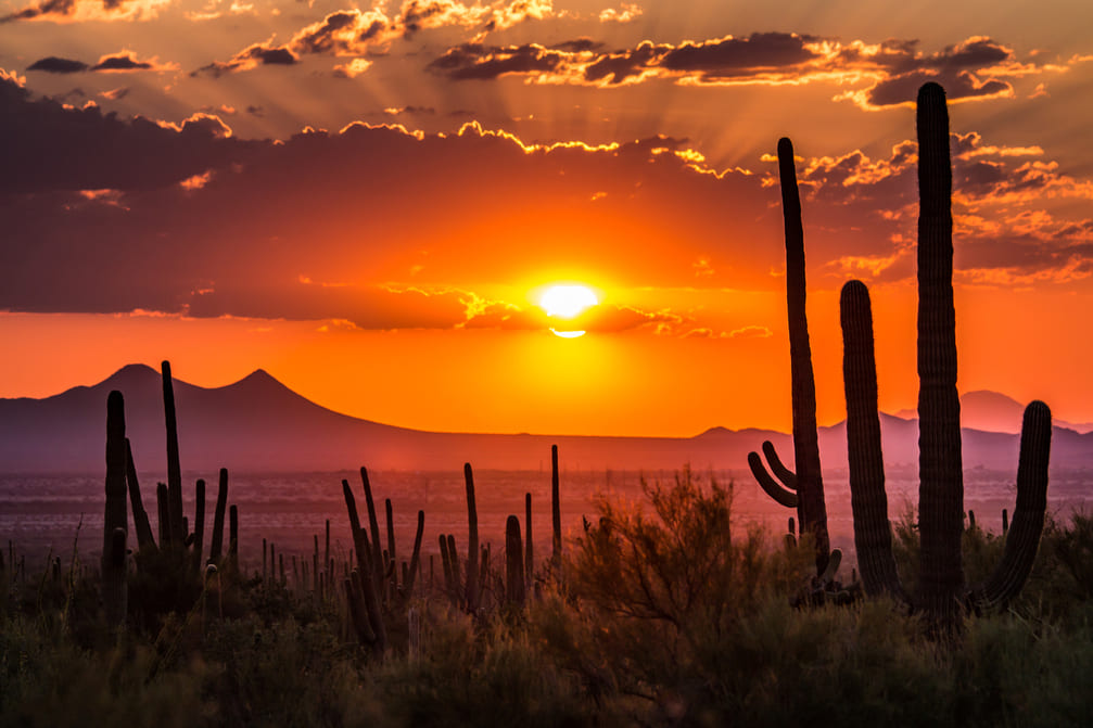 Top 10 Tips to Selling Your Home in Arizona